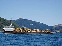 Timber Barge - Marlborough Sounds